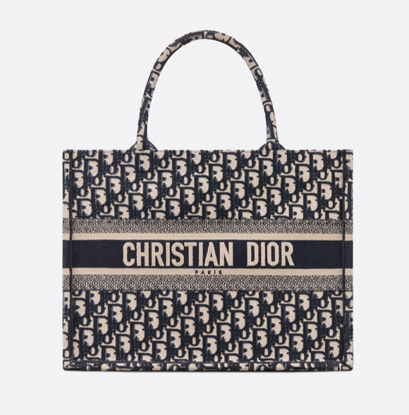 The Luxaholic Small Dior Book Tote1
